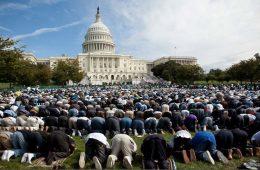 Norsk tenketank samarbeider med islamister