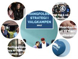 Høyre skreddersyr valgkampanje rettet mot innvandrere