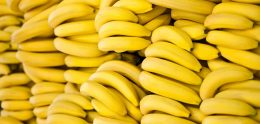Når selv Aftenposten ønsker bananrepublikken velkommen