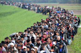 Sverige: 80 prosent av befolkningsveksten skyldes innvandring