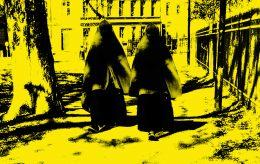 Flerkoneri, tvangsgifte og vold. Velkommen til Det nye Sverige