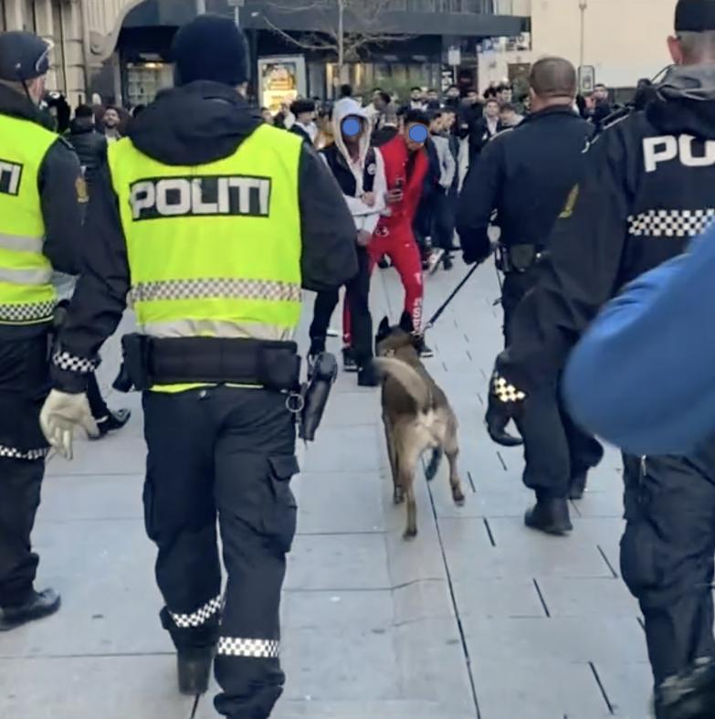 Mer bråk på 17. mai – politiet får usaklig kritikk